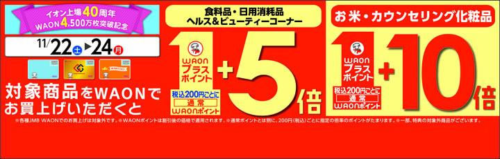 対象商品お買い上げで、WAONプラスポイント5倍!10倍!