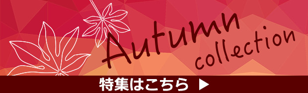autumn_collection2017