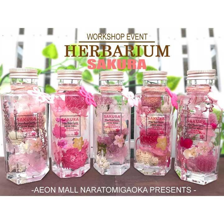 SAKURA COLOR HERBARIUM ,桜のハーバリウム,