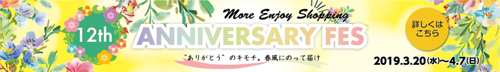 12th ANNIVERSARY FES