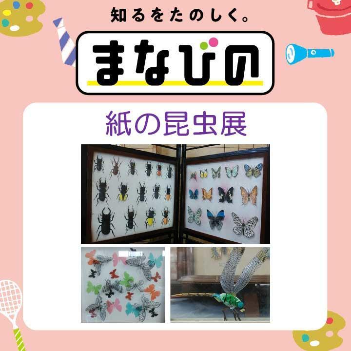 紙の昆虫展